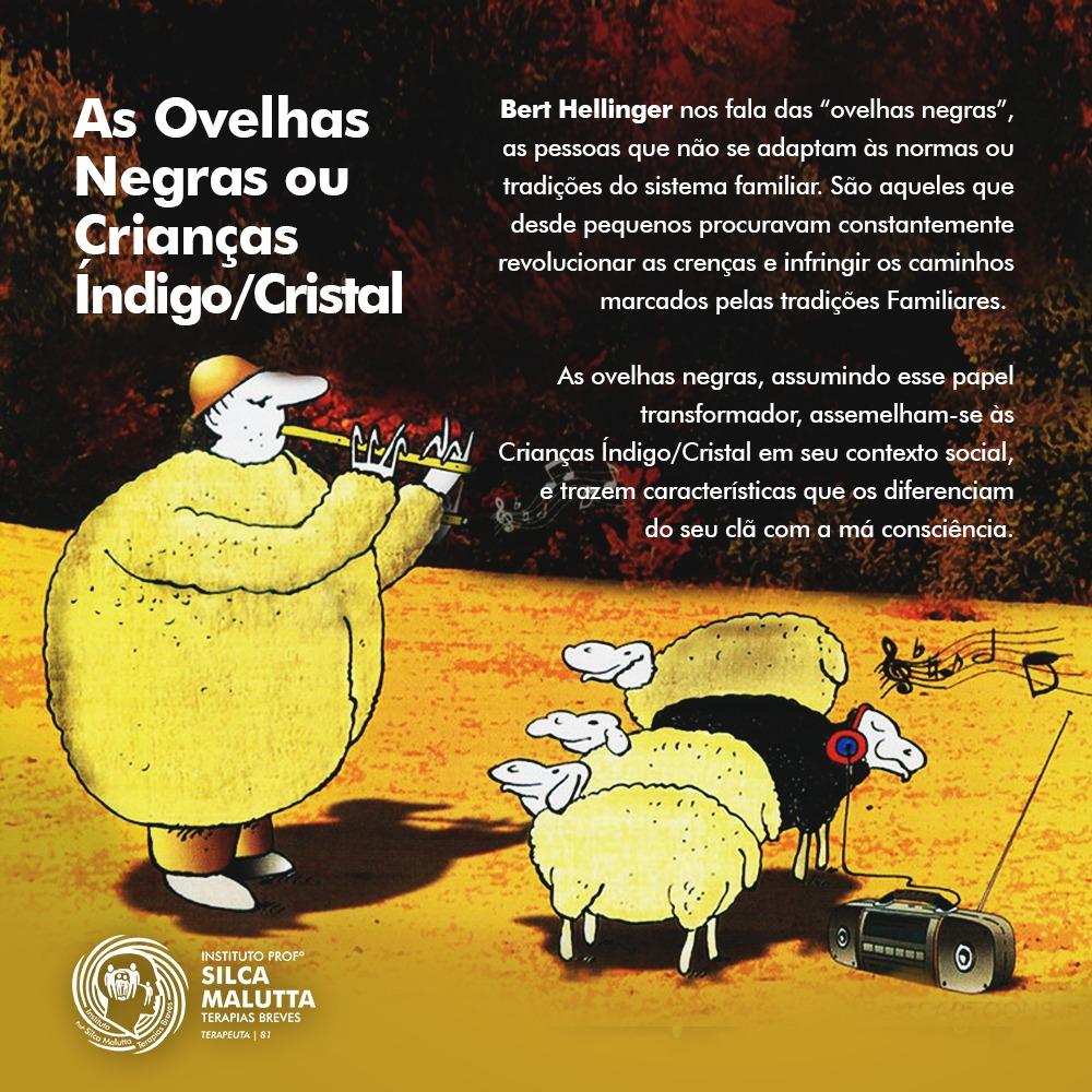 """As chamadas """"ovelhas negras"""""""