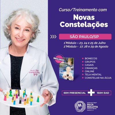 CF212 - Curso/Treinamento com as novas Constelações - Joinville/SC