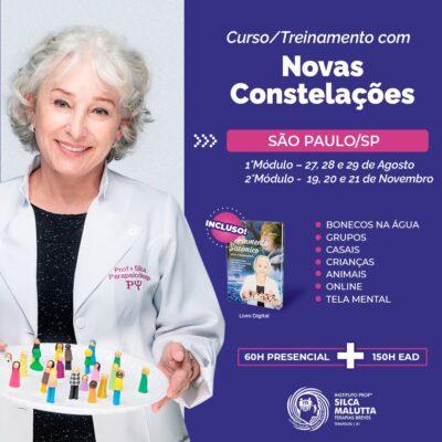 CF213 - Curso/Treinamento com as novas Constelações - São Paulo/SP